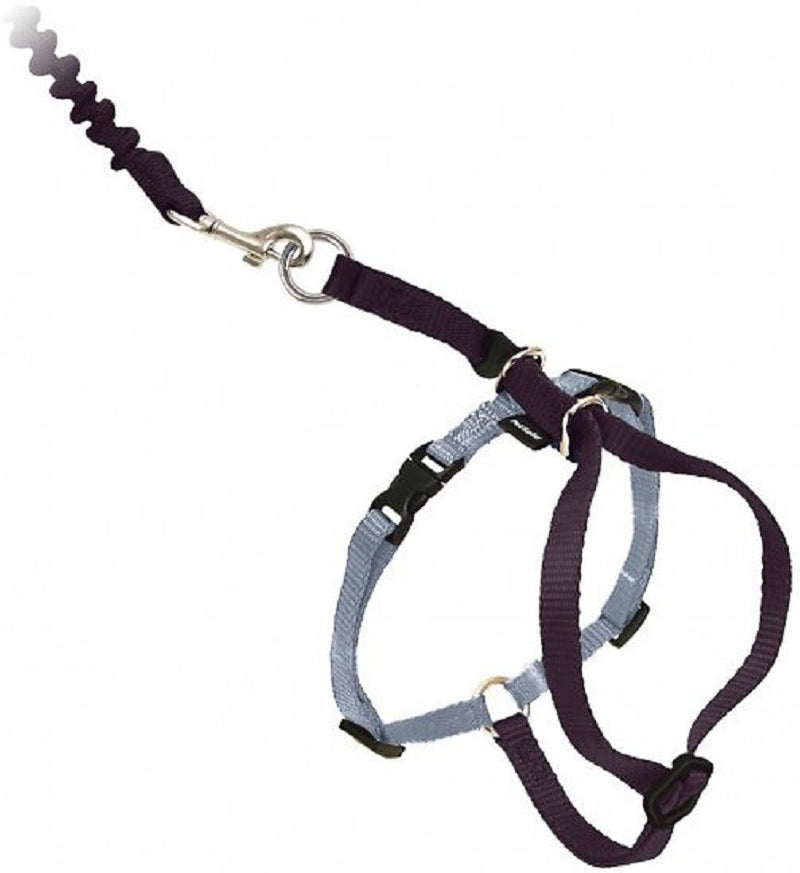 Kitty Harness & Bungee Leash, Color Black/Silver, Medium