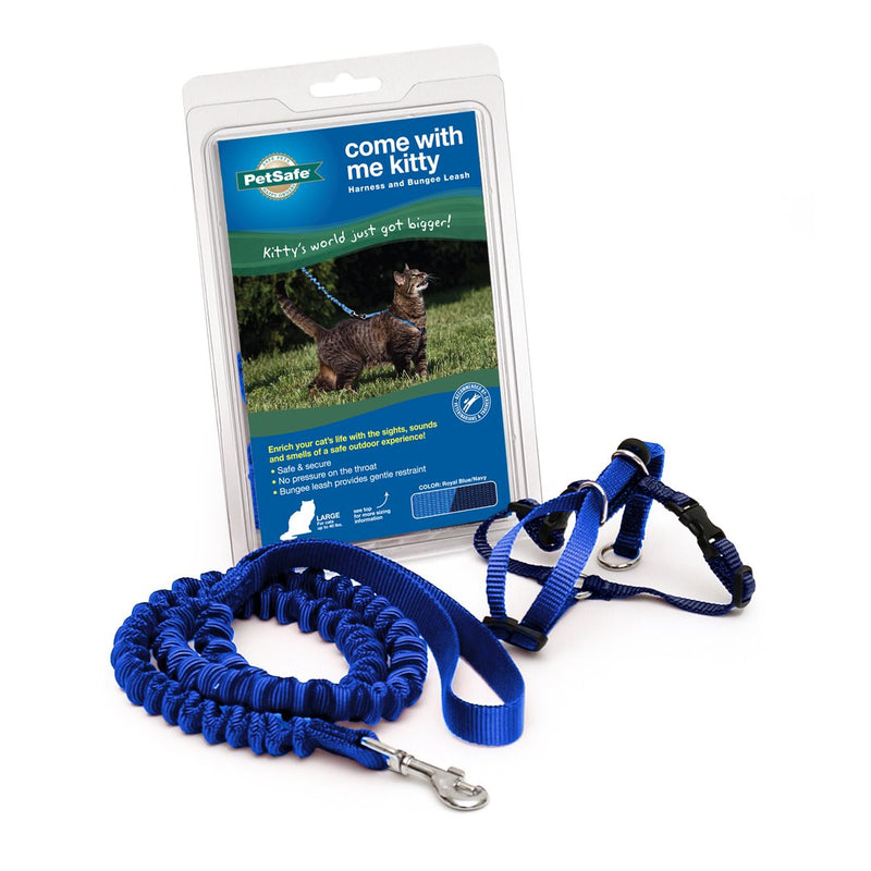 Kitty Harness & Bungee Leash, Color Blue, Medium