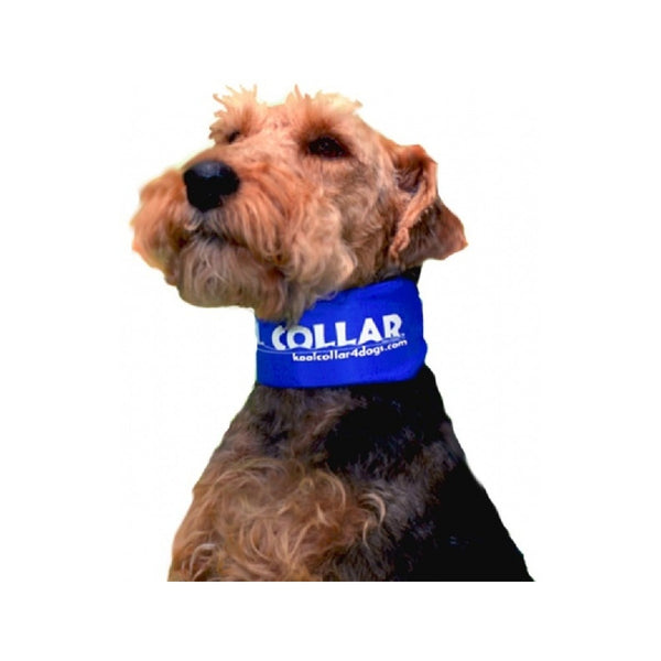 "Kool Collar, Color Blue, 11"" - 17.5"" Small"