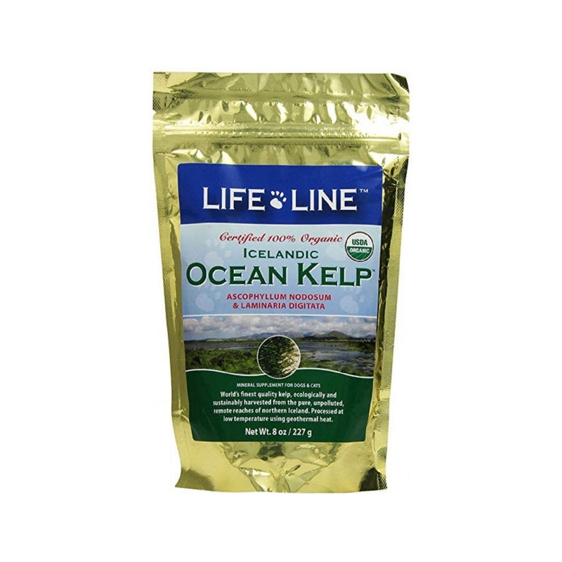 Organic Ocean Kelp Weight : 8oz