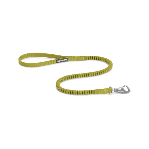 Ridgeline Stretch Leash, Color Forest Green, One