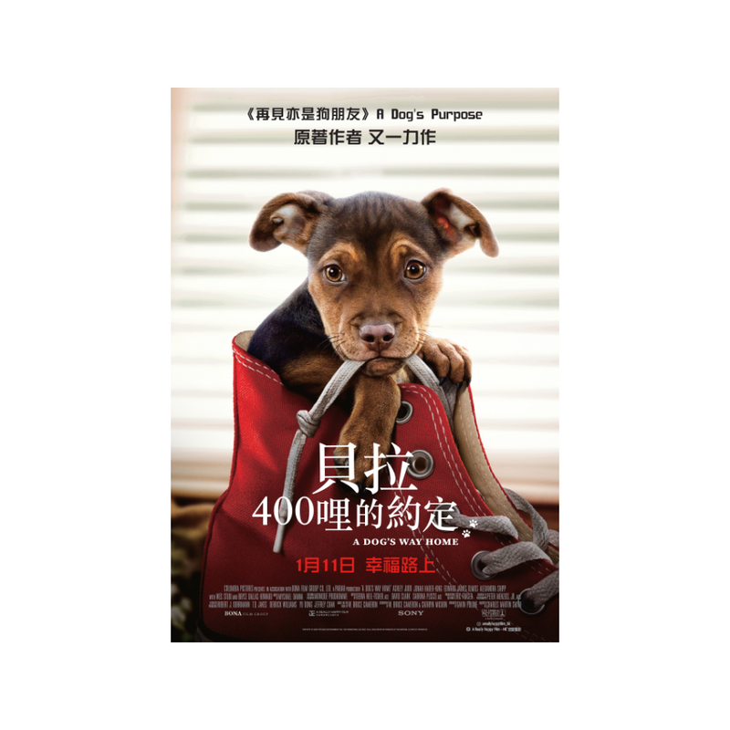 A Dog's Way Home Charity Premiere Ticket