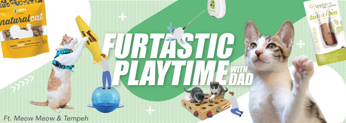Shop Furtastic Playtime with Dad (Cat) at Whiskers N Paws. Free shipping on orders over HK$300. We deliver everywhere in Hong Kong in less than 3 business days.