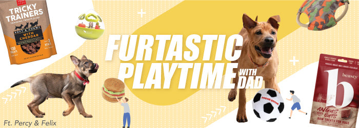 Shop Furtastic Playtime with Dad (Dog) at Whiskers N Paws. Free shipping on orders over HK$300. We deliver everywhere in Hong Kong in less than 3 business days.