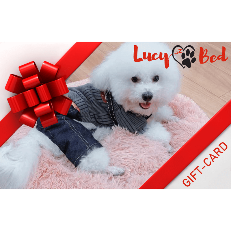 Gift a LucyBed™ - LucyBed™ - the softest cat's and dog bed for a healthy and stress free sleep!