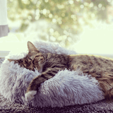 LucyBed™ Cat & Dog Cushion - LucyBed™ - the softest cat's and dog bed for a healthy and stress free sleep!