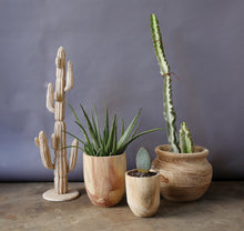 Load image into Gallery viewer, Handmade Wooden Pots - Free Shipping!
