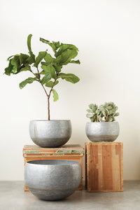 Grand scale Galvanized Planters - Free Shipping!