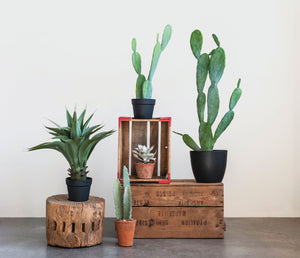 Faux Cactus - FREE SHIPPING!