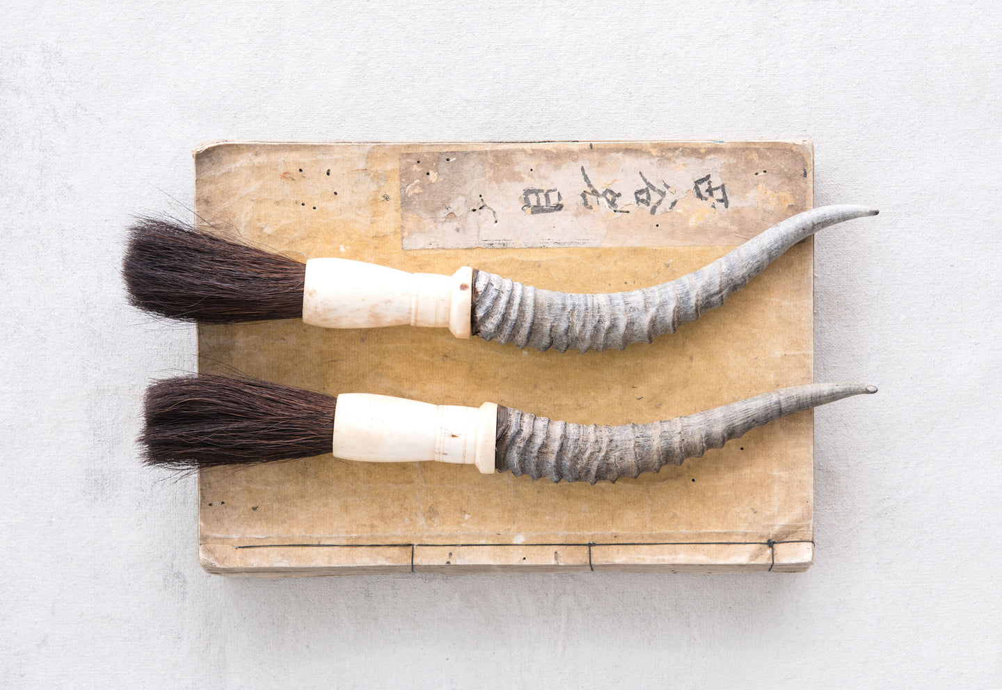 Horn Calligraphy Brush