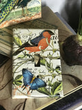 Hand-decoupaged Fauna Switchplate collection