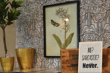 Load image into Gallery viewer, Botanical Wall Art - Free Shipping!