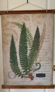Long Green Ferns Canvas on Wood Stretchers