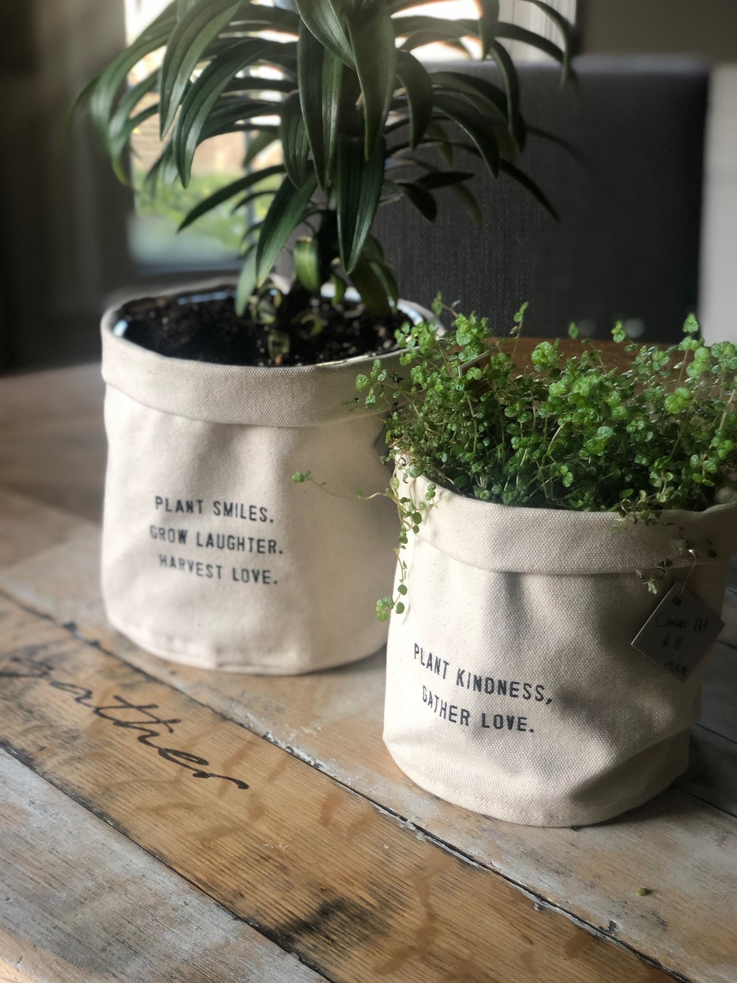Large Inspirational Canvas Planter
