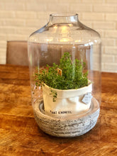 Load image into Gallery viewer, Beautiful Terrarium