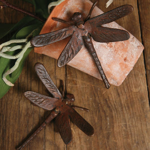 CAST IRON DRAGONFLY