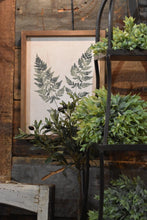 Load image into Gallery viewer, Framed ready to hang Fern Art