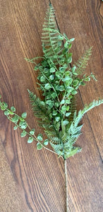 Mixed Fern Pick