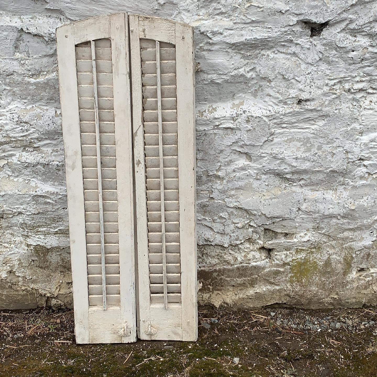 Pair of Arched Shutters