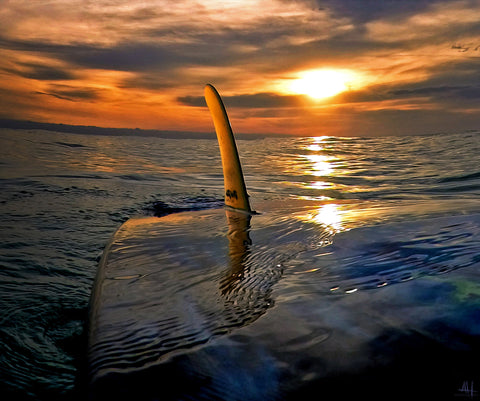 Single Fin Sunset