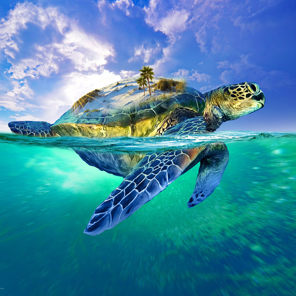 Image result for turtle island