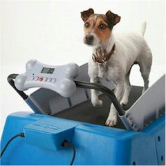 DogTread Small Dog Treadmill - With K9 Fitness Program
