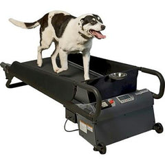 DogTread Medium Dog Treadmill - With K9 Fitness Program