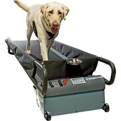 DogTread Large Dog Treadmill - With K9 Fitness Program