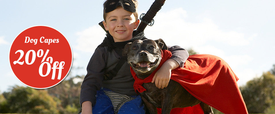 Dog Capes 20% Off