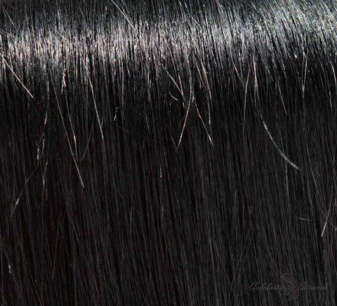 "18"" Clip In Remy Hair Extensions: Black Stallion No. 1 - Celebrity Strands  - 1"
