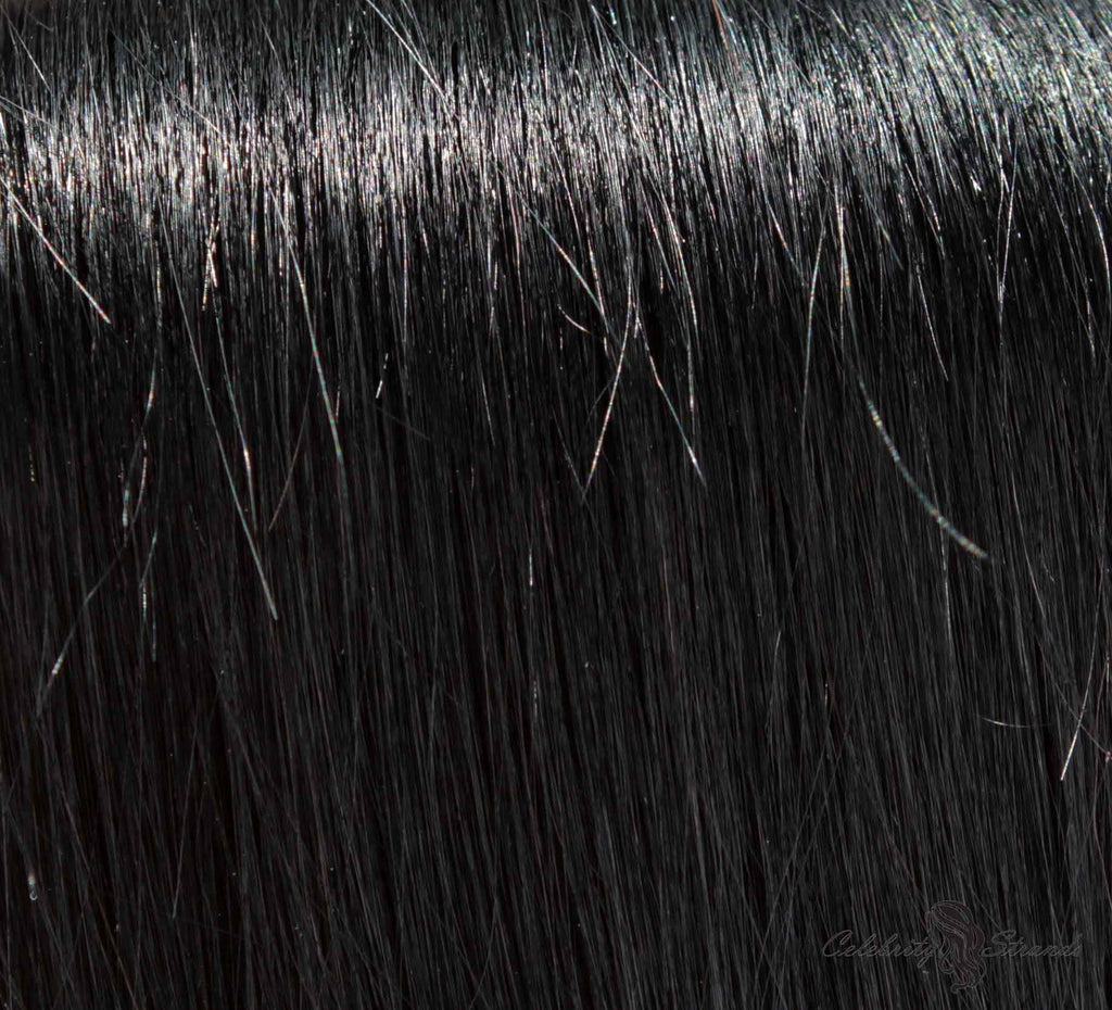 "24"" Clip In Remy Hair Extensions: Black Stallion No. 1 - Celebrity Strands  - 1"