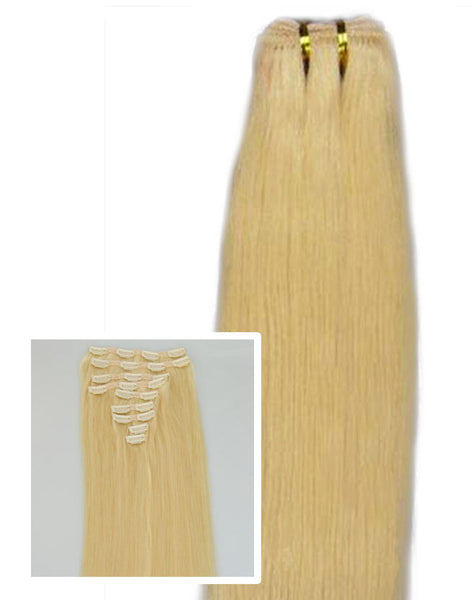 "Spotlight Platinum:  21"" Clip In Hair Extensions - Celebrity Strands  - 3"