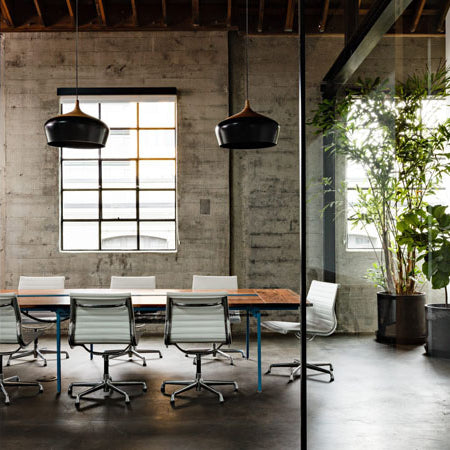 Startup Office Design Ideas for a Flying Start