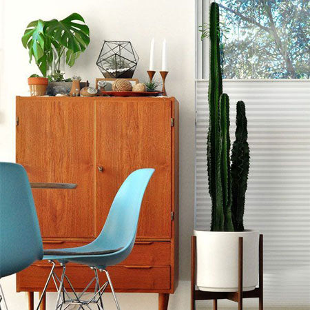 Mid-century Modern Design: Enduring Looks We Love