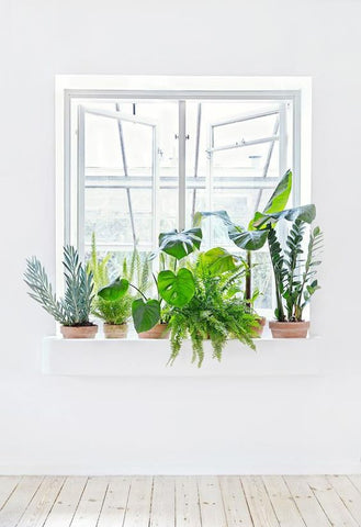 Pile on the plants for pantones greenery