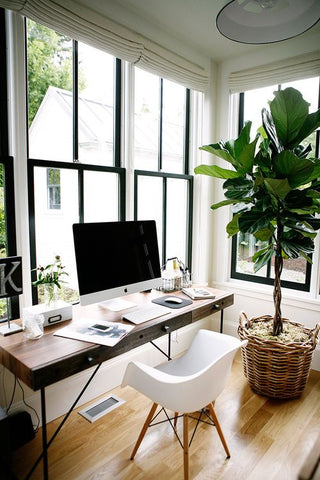 A desk by the window and a plant nearby makes gives this home office a breezy feel. Plus, it saves energy by making use of natural lighting