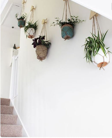 Make a little indoor garden out of your staircase Adding potted, low-maintenance succulents on every step infuses a dash of bright colours to your otherwise hum