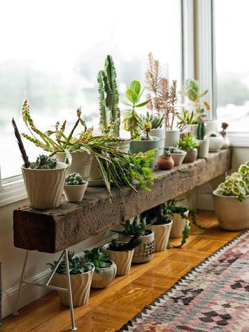 Wooden planter bench