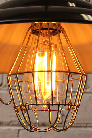 edison led light bulbs cage light