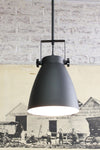Cellar pendant light pole mount shade