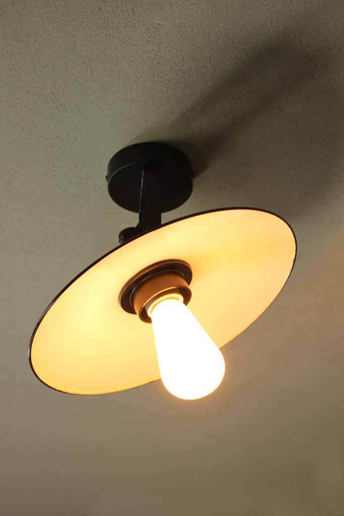 Dish ceiling light for tilted lighting