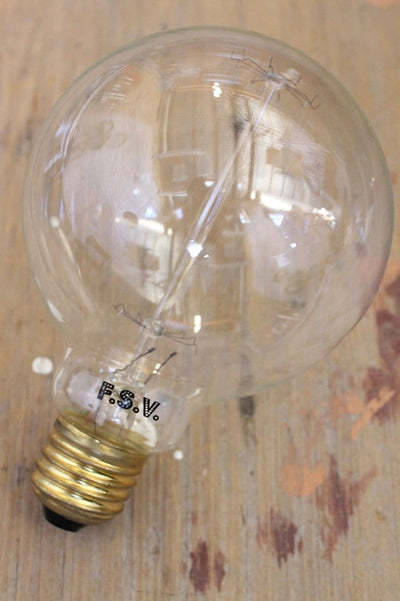 Edison bulb large round squirrel cage filament 25w