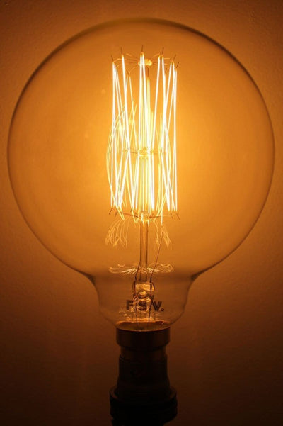 Edison bulb x large round squirrel cage filament