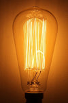 Edison light bulb squirrel cage filament