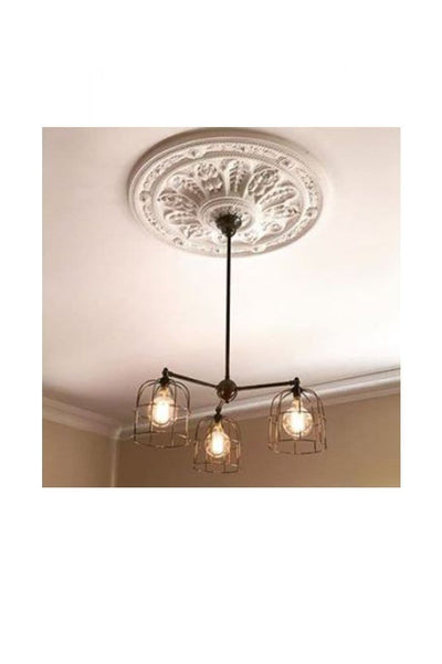 Ornate ceiling rose with industrial pendant. vintage chandelier with cages. buy cage lighting online