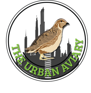 The Urban Aviary
