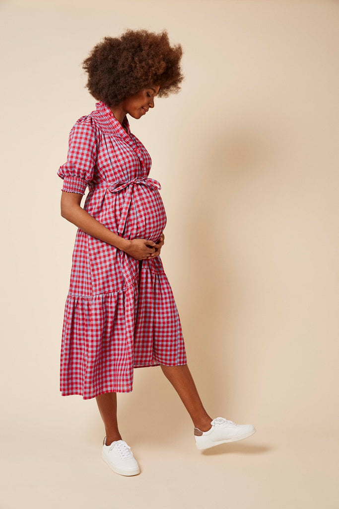 Phoebe Dress in Pink and Blue Gingham