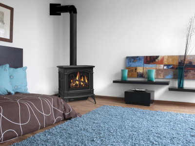 Napoleon Gas Fireplace Stove