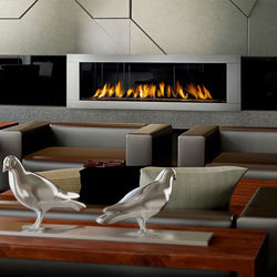 Napoleon Direct Vent Gas Fireplaces - Modern