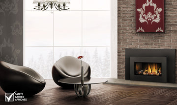 Napoleon Gas Fireplace Insert - GDI30